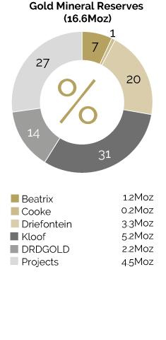 2E and 4E PGM Mineral Resources (204.4Moz)*